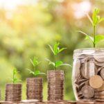 Greenwashing Investimenti a impatto