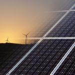 green recovery :: Hamid-Reza Khoyi